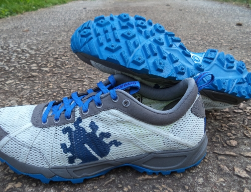 Review: Icebug Mist RB9X Shoes