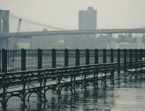 What I Think About Murakami Running and Writing